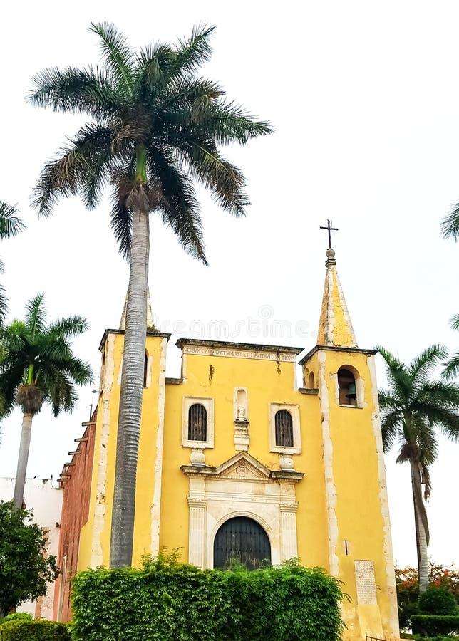 圣诞老人安娜Cathederal在有棕榈树的梅里达墨西哥 图库摄影