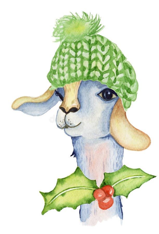 圣诞节与圣诞老人帽子和围巾冬天水彩动物逗人喜爱的孩子例证的喇嘛例证 皇族释放例证