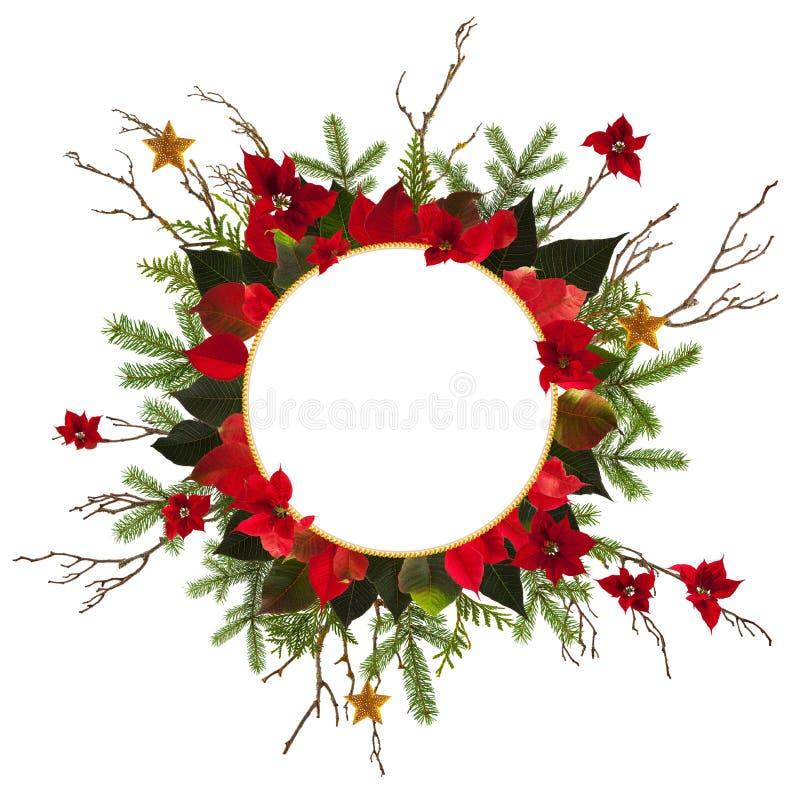 圣诞节与金黄星和poinsetta的装饰背景 免版税库存图片