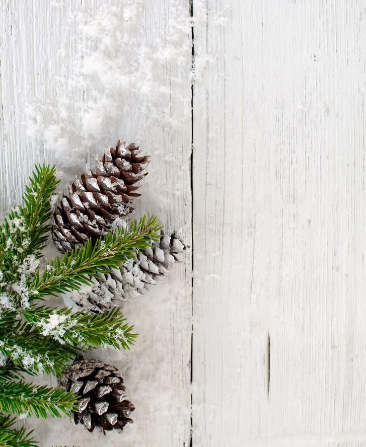 圣诞节与锥体的冷杉分支在老白色木背景 库存图片