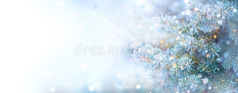 圣诞节假日树 边界雪背景 雪花 蓝色云杉、美好的圣诞节和新年Xmas树 免版税库存图片