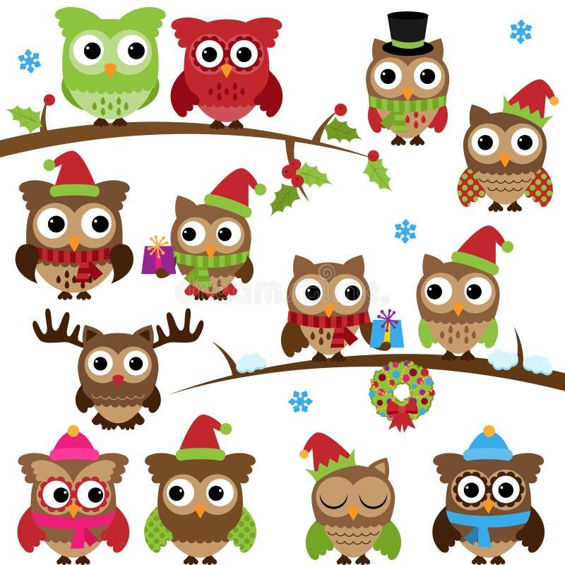 圣诞节假日主题的猫头鹰和分支的传染媒介汇集 皇族释放例证