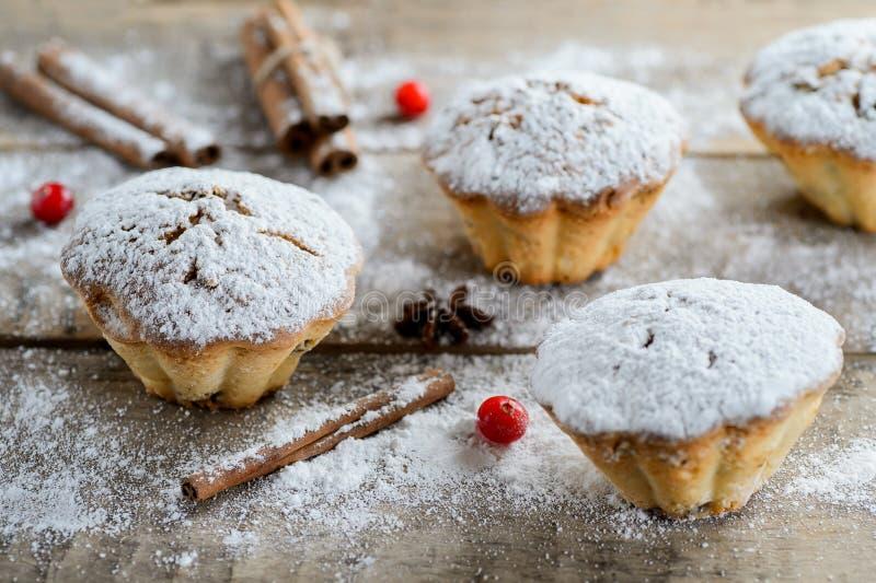 圣诞节冬天食品组成:在糖粉的蛋糕用蔓越桔和桂香 免版税库存图片