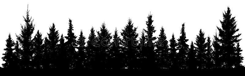 圣诞节冷杉木剪影森林  具球果云杉 常青木头公园  在白色背景的传染媒介 向量例证
