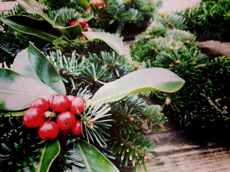 圣诞节加冠在老木背景的构成 杉木和月桂树分支-葡萄酒减速火箭的圣诞节概念顶视图  库存图片