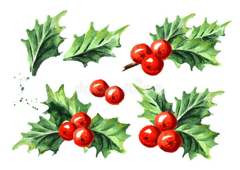 圣诞节和新年标志装饰霍莉莓果集合 水彩手拉的例证,隔绝在白色背景 库存例证