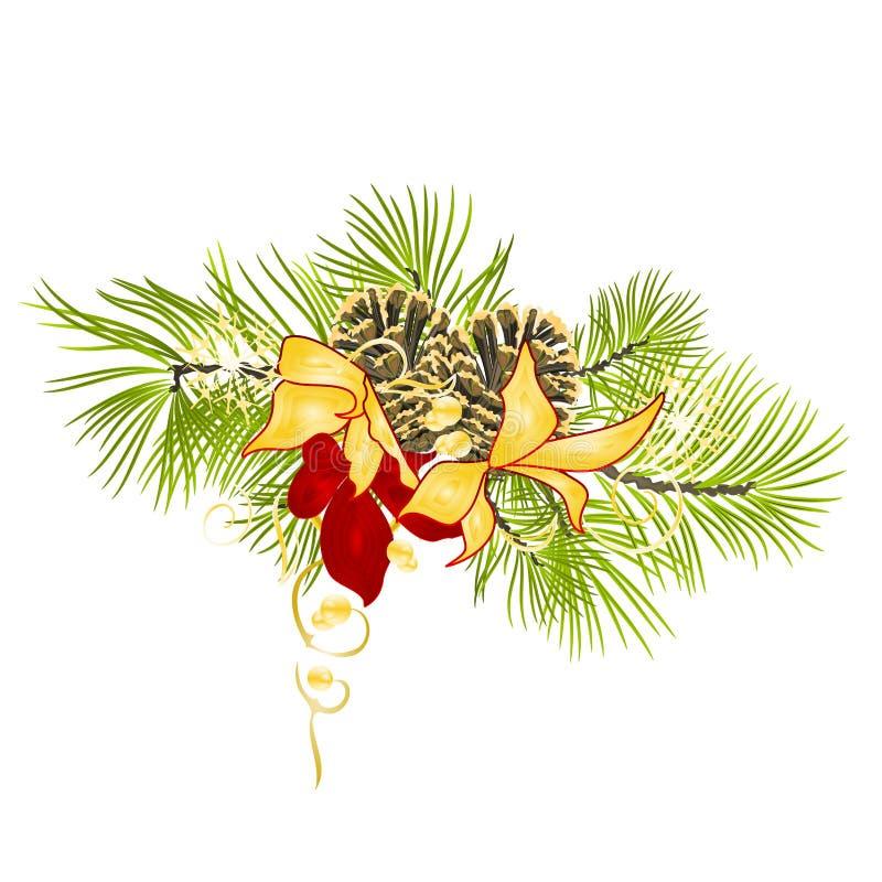 圣诞节和新年装饰与杉木锥体的杉树分支与在一白色背景vin的金黄和红色欢乐一品红 向量例证