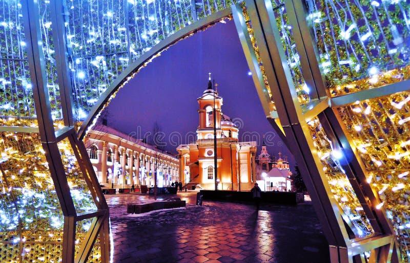 圣诞节和新年2019装饰在Zaryadye公园在莫斯科 库存照片