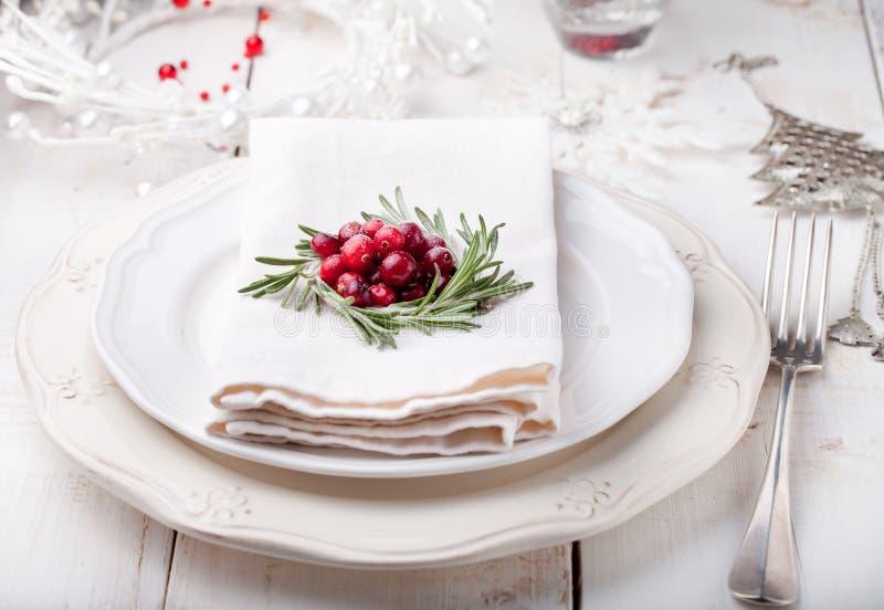 圣诞节和新年假日制表与蔓越桔装饰的设置 库存照片
