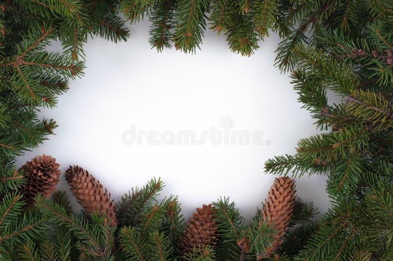 圣诞节和新年在白色backgroun的装饰构成 免版税图库摄影