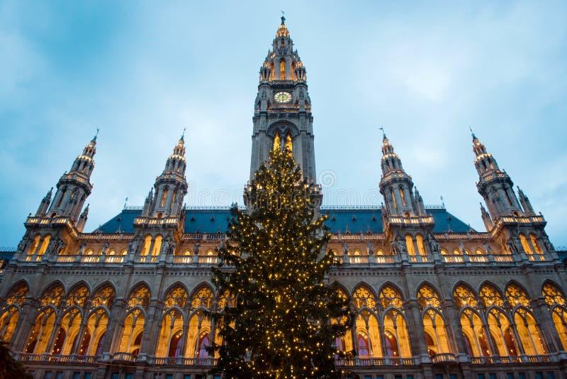 圣诞节在维也纳,奥地利 免版税库存照片