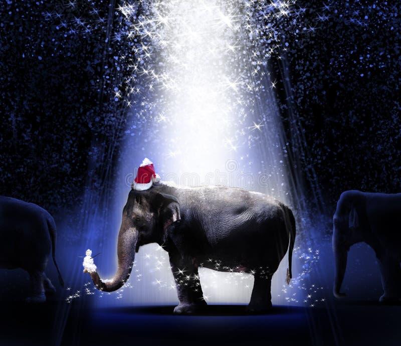 圣诞节大象 免版税图库摄影