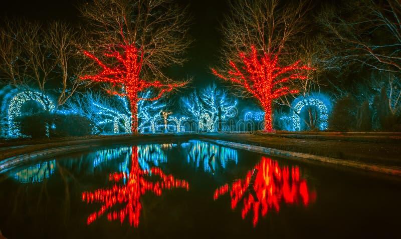 圣诞节季节光和装饰在丹尼尔stowe庭院 库存照片