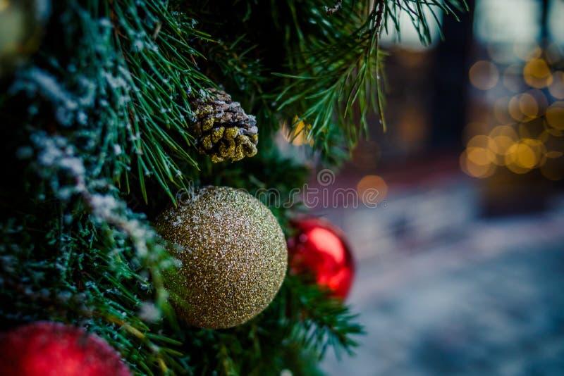 圣诞节家庭大气 垂悬在霜的红色,金黄圣诞节装饰品用拷贝空间盖了杉树户外 免版税库存照片