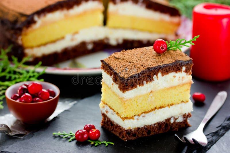 圣诞节巧克力柠檬奶油蛋糕 免版税库存照片