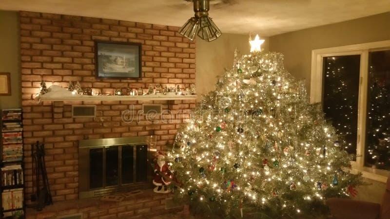圣诞节巨大的结构树 库存照片