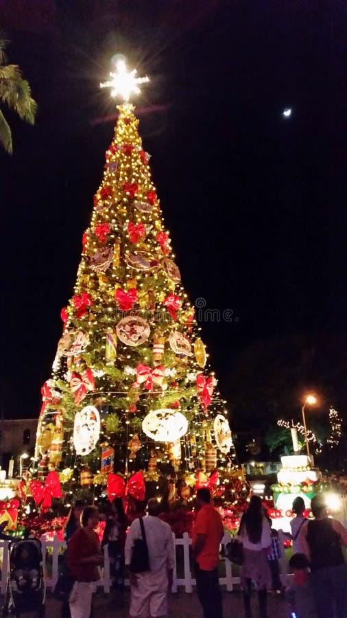圣诞节庆祝在檀香山奥阿胡岛夏威夷 免版税库存照片