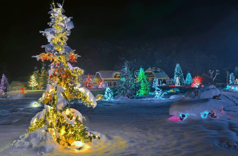 圣诞节故事在克罗地亚 免版税库存照片