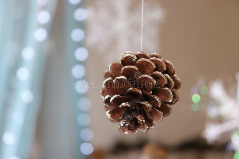 圣诞节新年树圣诞灯pinecone 免版税库存图片