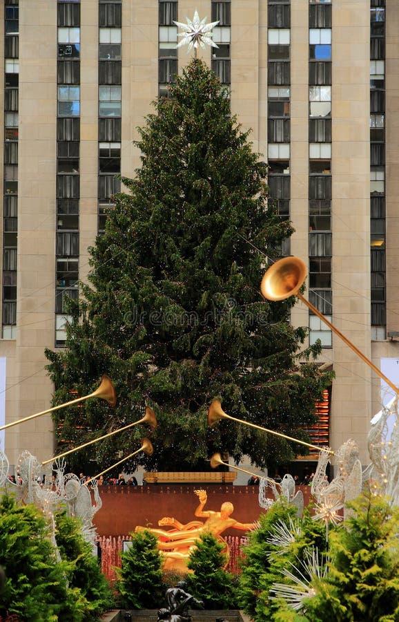 圣诞节新的季节约克 图库摄影