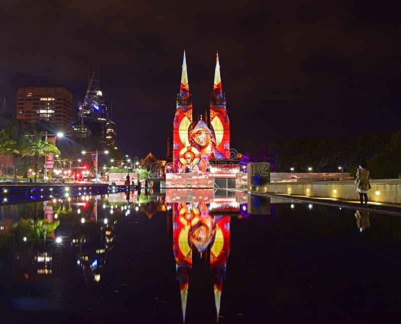 圣诞节普遍的光在圣Mary's大教堂,悉尼的 库存图片