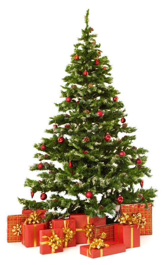 圣诞节杉树和礼物礼物盒在白色背景 免版税库存图片