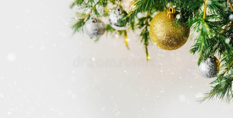 圣诞节构成装饰和诗歌选杉树分支 图库摄影