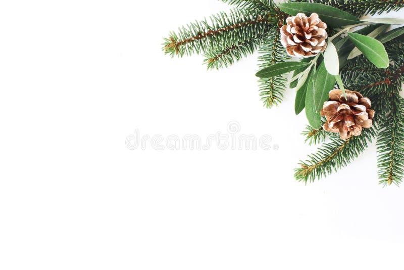 圣诞节欢乐被称呼的储蓄构成 壁角装饰 杉木锥体、冷杉和橄榄树叶子和分支白色 免版税库存照片