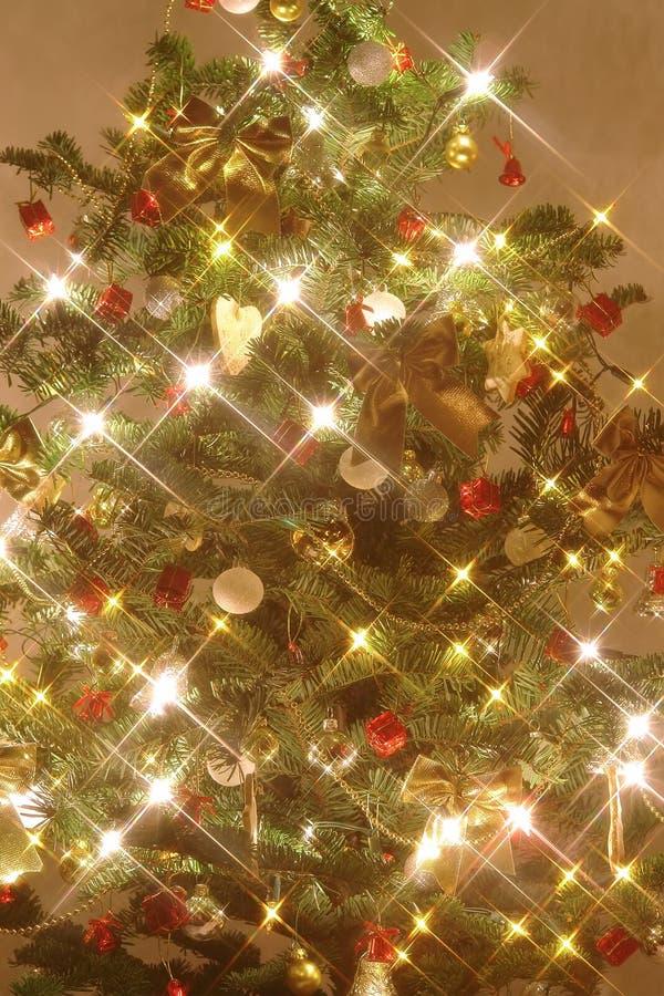 圣诞节照亮了结构树 库存图片