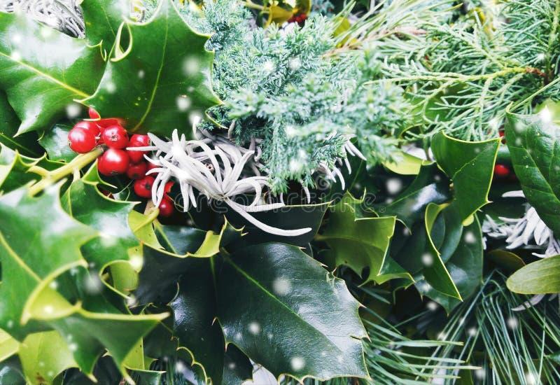 圣诞节特写镜头加冠构成 杉木和月桂树分支-与雪的葡萄酒减速火箭的圣诞节概念顶视图  免版税库存图片