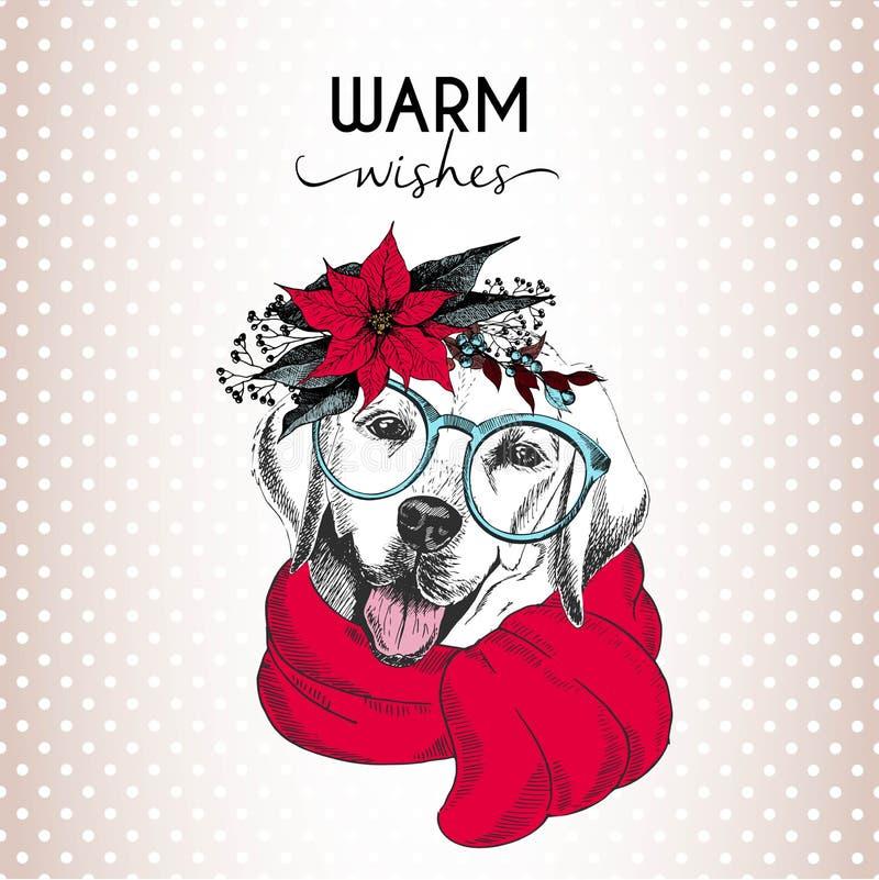 圣诞节狗传染媒介画象  拉布拉多猎犬狗佩带的一品红花圈、太阳镜和围巾 库存例证