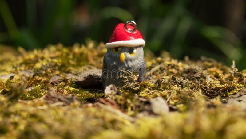 圣诞节猫头鹰 免版税库存照片