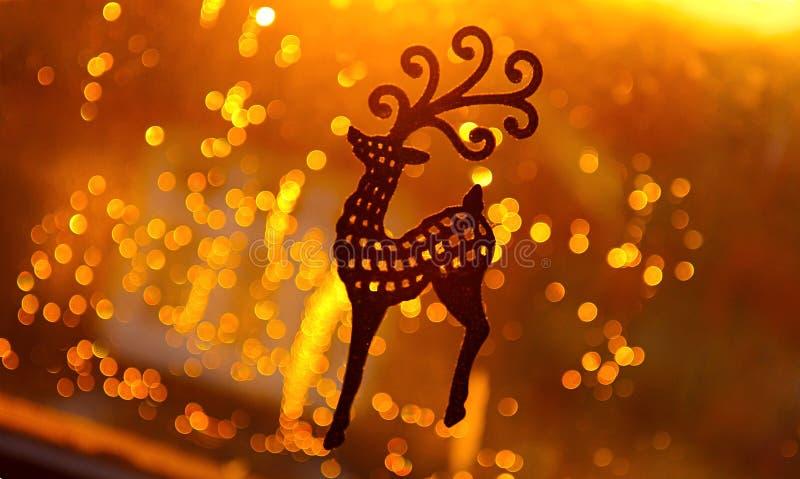 圣诞节玩具鹿装饰 库存图片