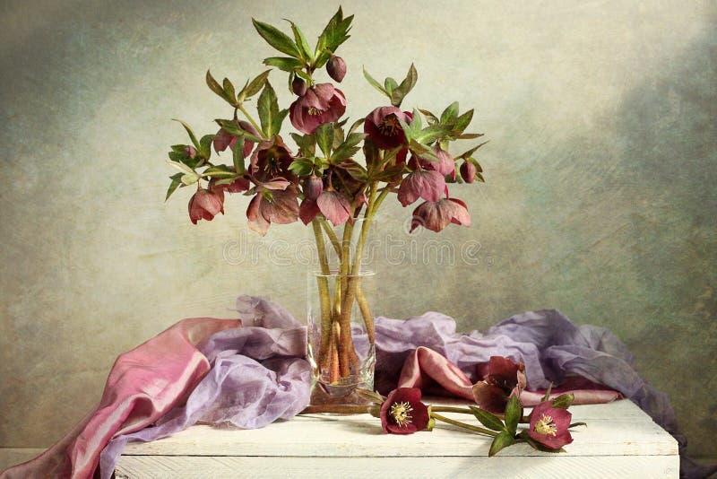 圣诞节玫瑰 免版税图库摄影