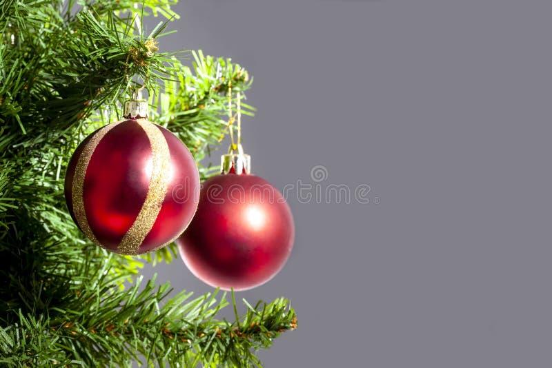 圣诞节球在与拷贝空间的一个圣诞树分支垂悬了在灰色背景 免版税库存图片