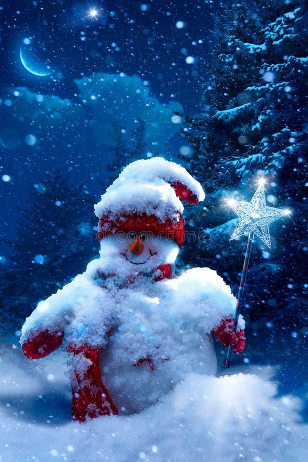圣诞节用雪报道的雪人和冷杉分支 免版税库存图片