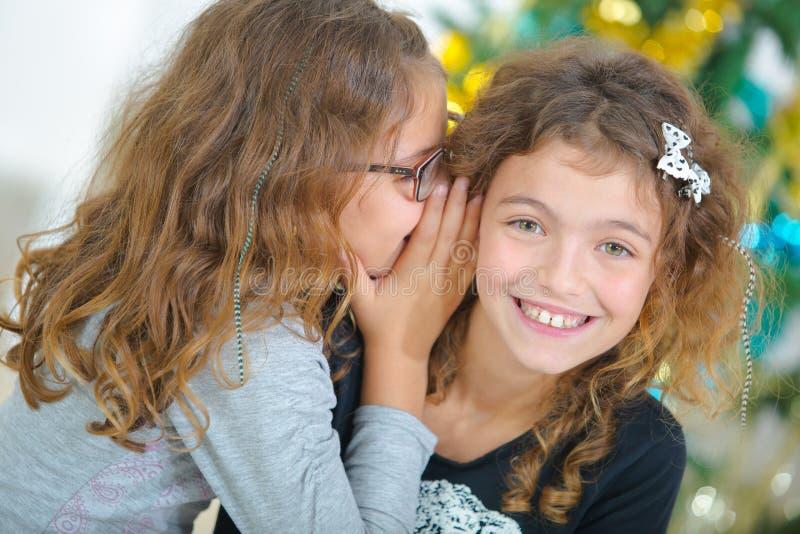 圣诞节的两个年轻姐妹 图库摄影