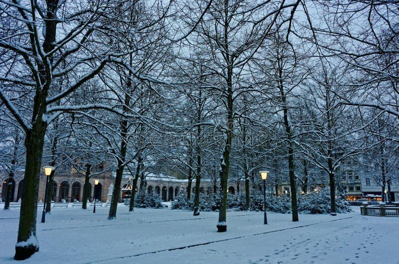 圣诞节的斯诺伊公园由黄昏 库存照片