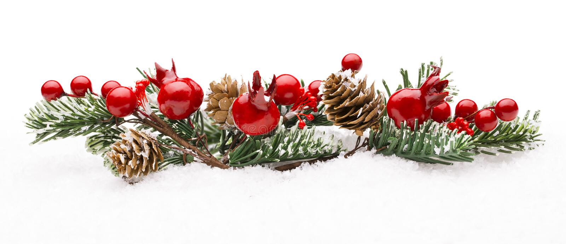圣诞节红色莓果装饰,莓果分支杉树锥体 图库摄影