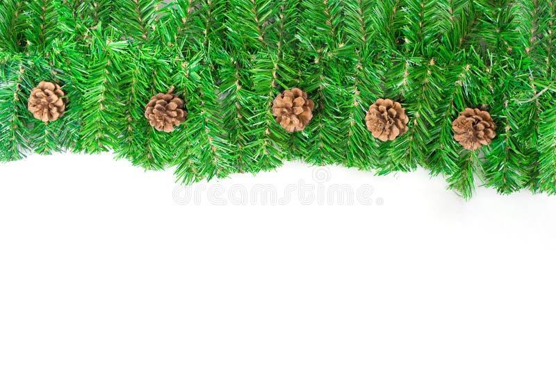 圣诞节结构绿色针杉木 免版税库存图片