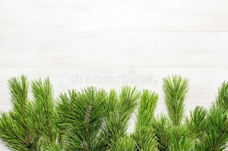 圣诞节背景,绿色杉木在白色木桌上分支 创造性的构成有边界和拷贝空间设计顶视图 免版税库存图片
