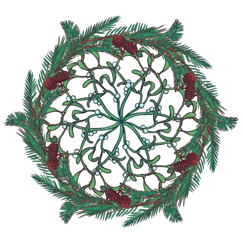 圣诞节花卉圆装饰品 与叶子、锥体和莓果的杉树和槲寄生分支 圣诞节问候 皇族释放例证