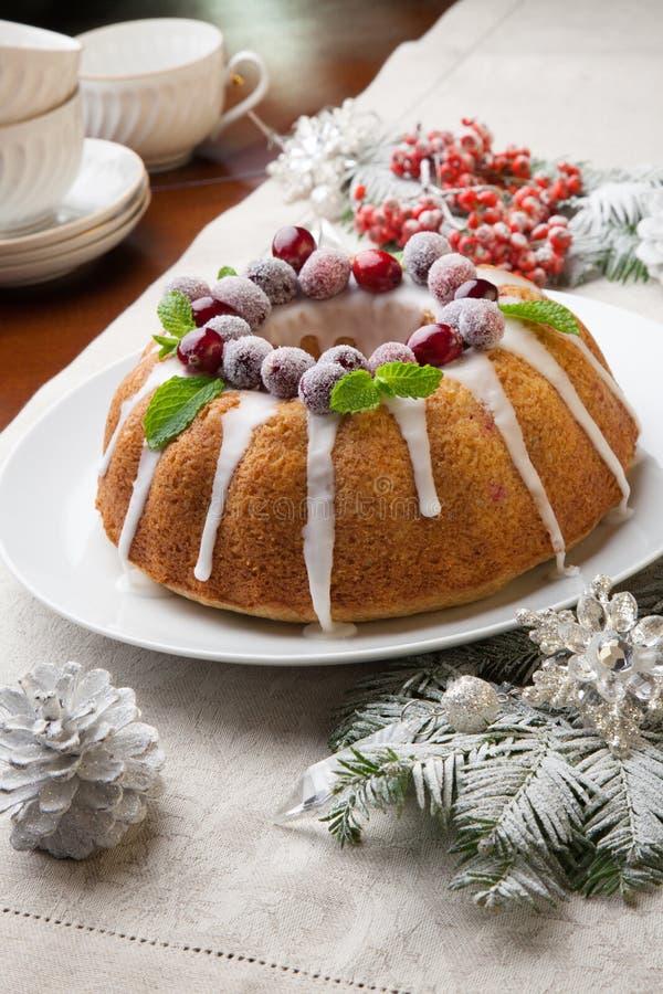 圣诞节蔓越桔蛋糕 免版税库存图片