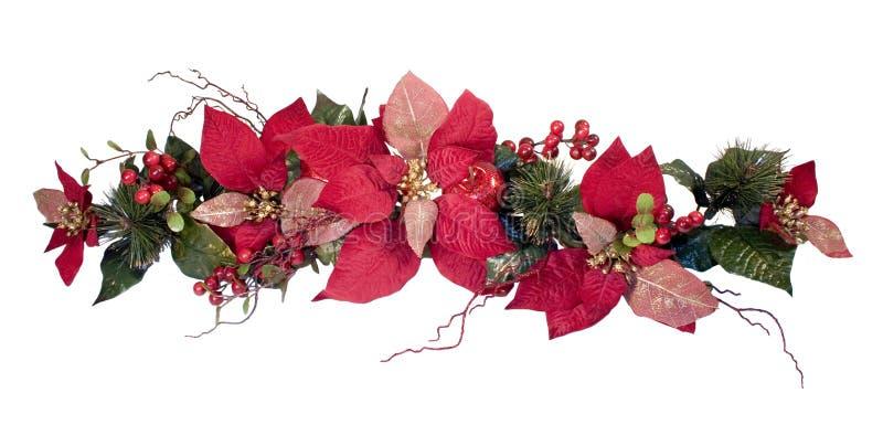 圣诞节装饰一品红 图库摄影