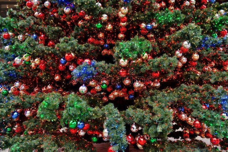 圣诞节装饰了冷杉 库存照片