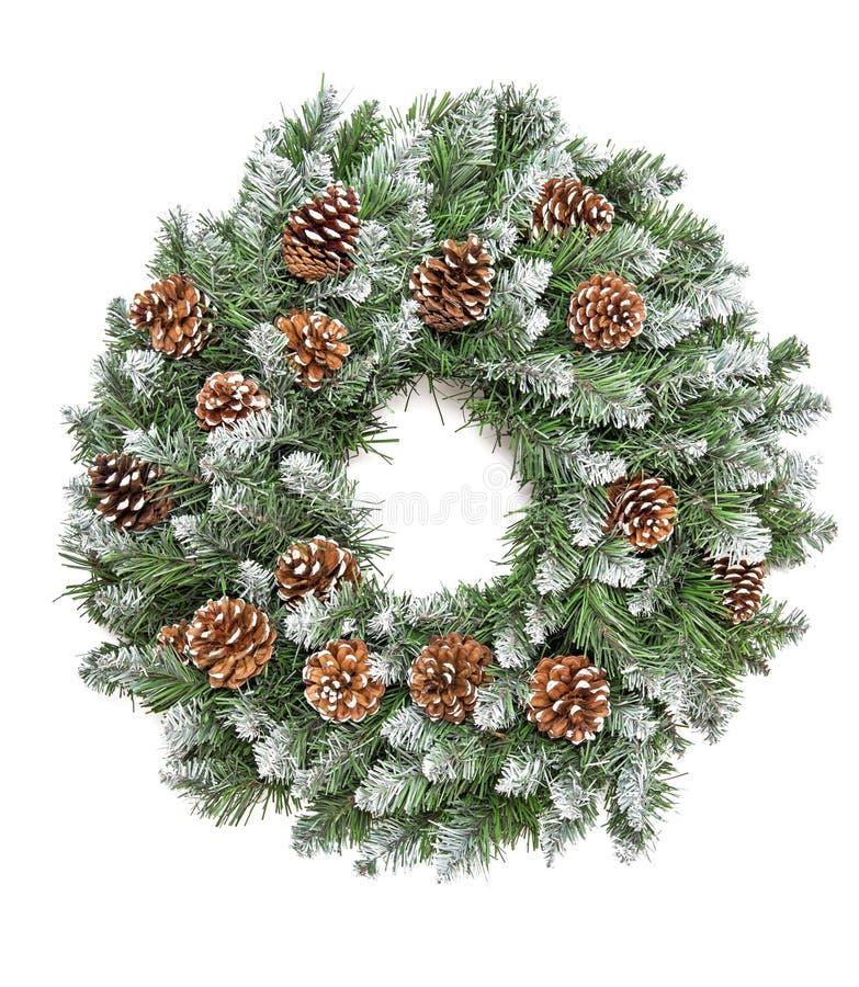 圣诞节装饰常青杉木花圈锥体白色backgroun 库存照片