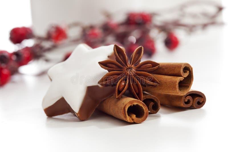 圣诞节装饰肉桂条八角和桂香在白色背景担任主角 免版税图库摄影