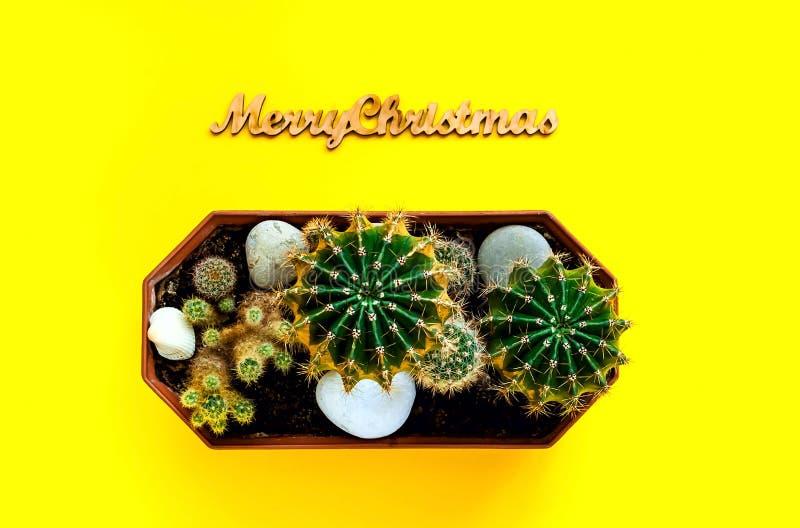 圣诞节装饰,一点仙人掌使用圣诞快乐邮票在黄色背景,新年假日,拷贝的概念的spacen 免版税库存图片
