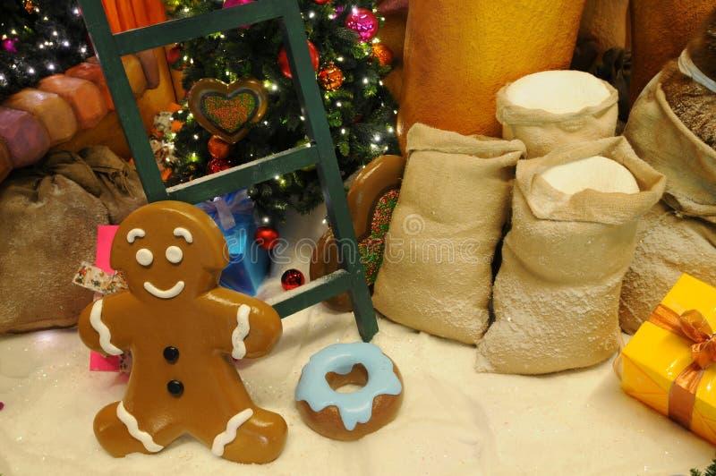 Download 圣诞节装饰 库存图片. 图片 包括有 帽徽, 重点, 存在, 有阳台, 背包, 颜色, 礼品, 冬天, 曲奇饼 - 22352469
