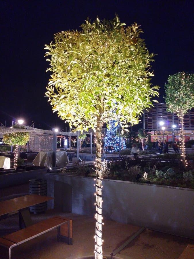 圣诞节装饰xmas树雅典希腊 免版税库存图片